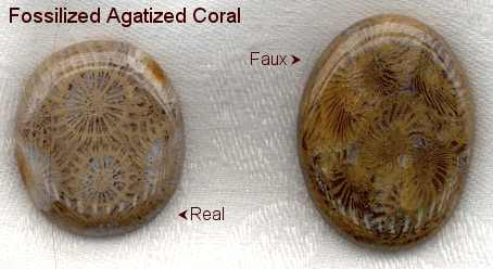 Agatized Fossil Coral Healing