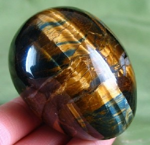 Blue Gold Tiger Eye Eggs