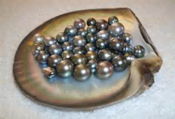 Pearl Crystal Soap With Rock